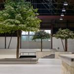 Project Eik skate park breda Pier 15 kopie